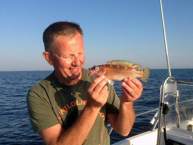 Rekord på fisken brunsnultra – två gånger om