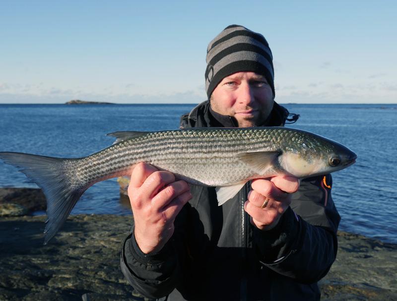Sportfiskerekord på helt ny art: tunnläppad multe