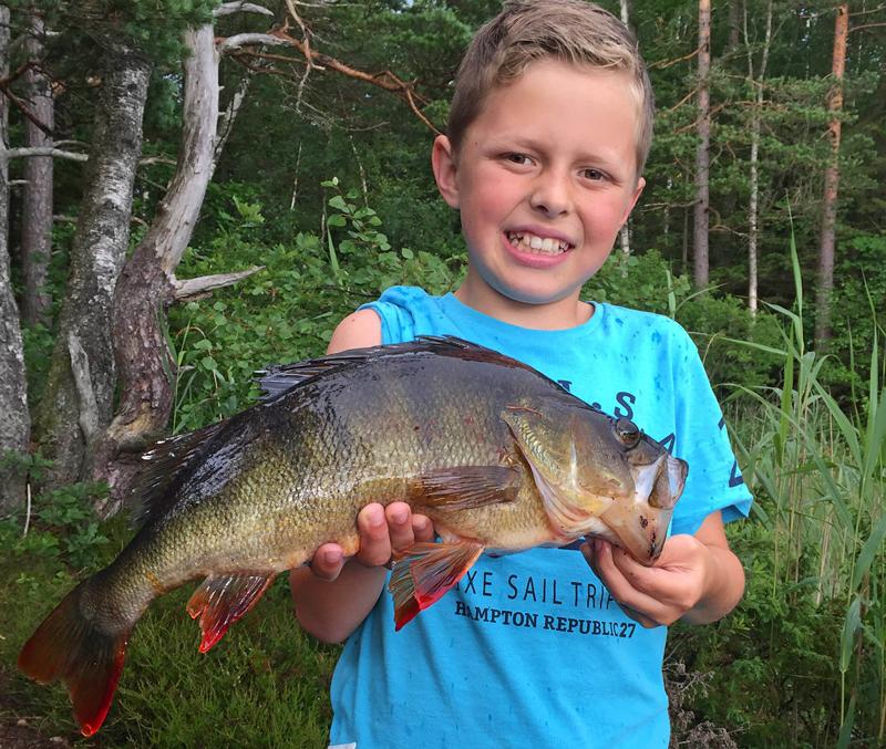 Bli en bättre fiskare med Storfiskregistret!