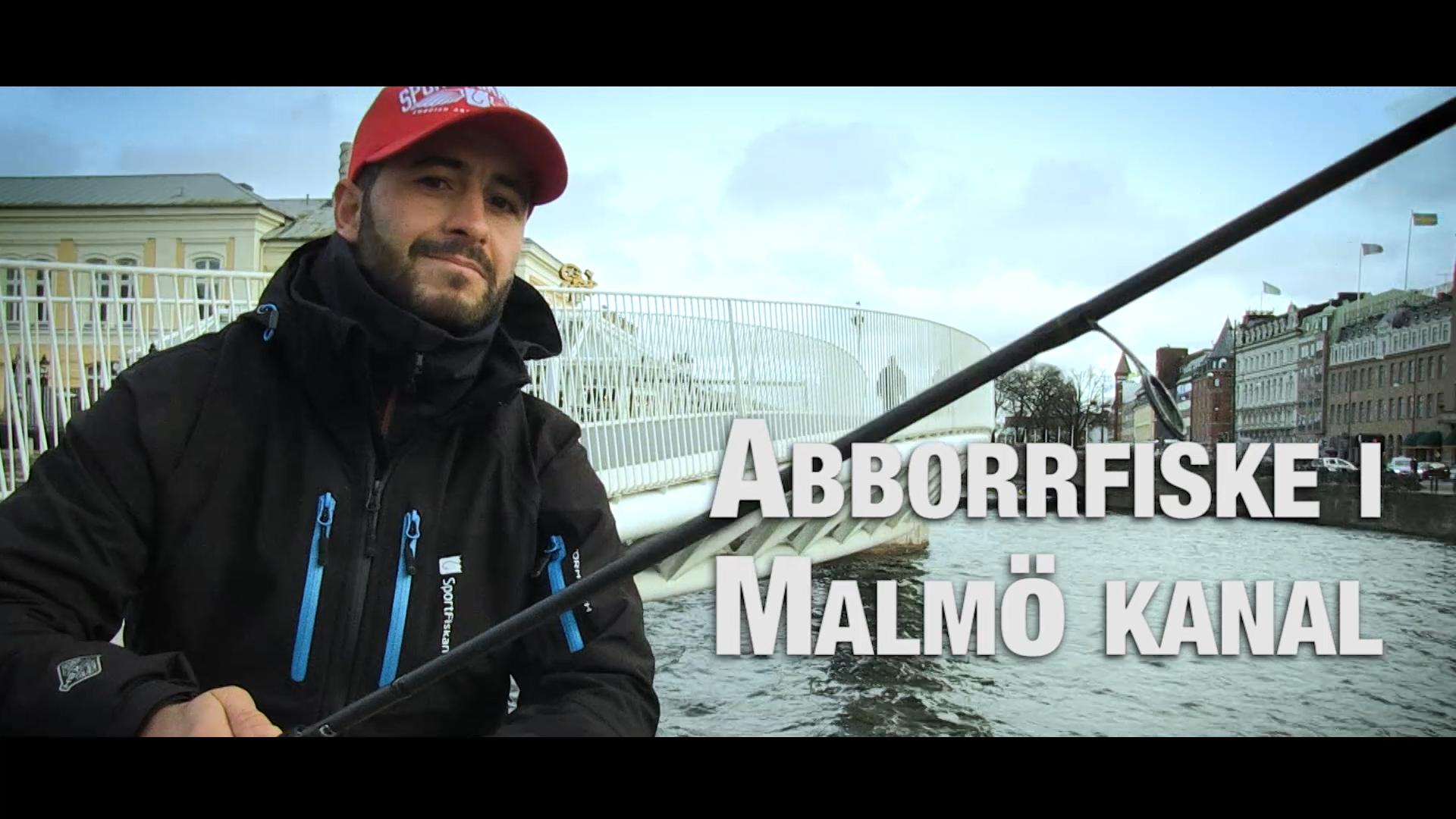 Abborrfiske i Malmö kanal