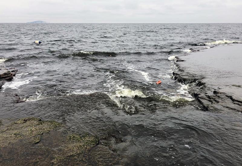 Sportfiskarna vill få utökade fredningsområden på Öland