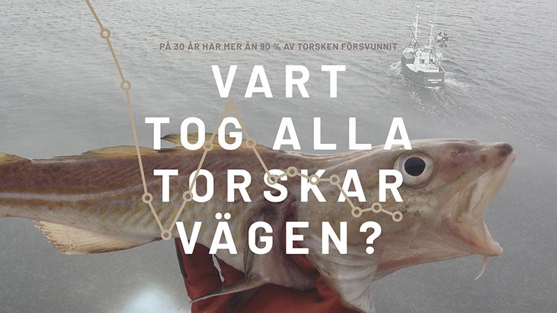 Sportfiskekväll i Västervik, Kalmar och Karlskrona