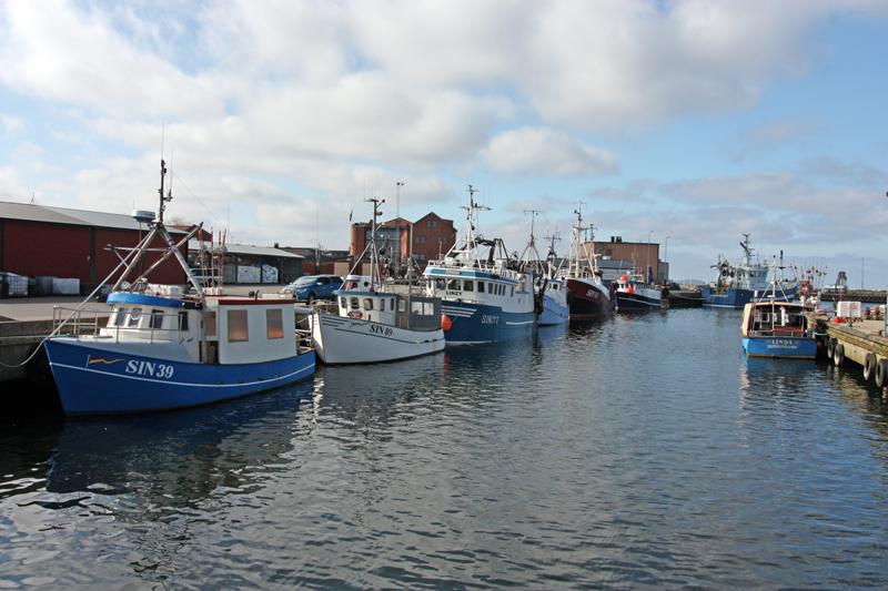 Kraftigt minskat torskfiske i Östersjön 2020