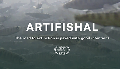 Artifishal - film och samtal