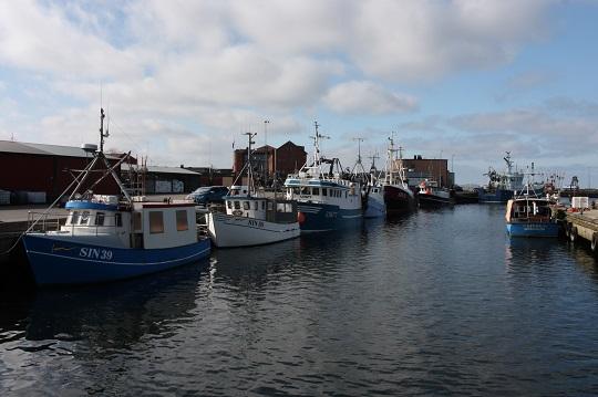 ICES rekommenderar fiskestopp för torsken i östra Östersjön