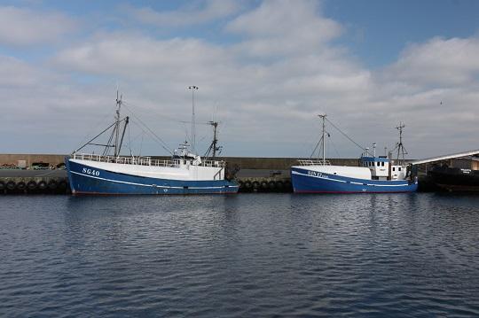 EU-kommissionen nödstoppar torskfisket i Östersjön