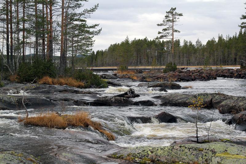 90 miljoner till vatten- och fiskevård i Jämtlands och Gävleborgs län