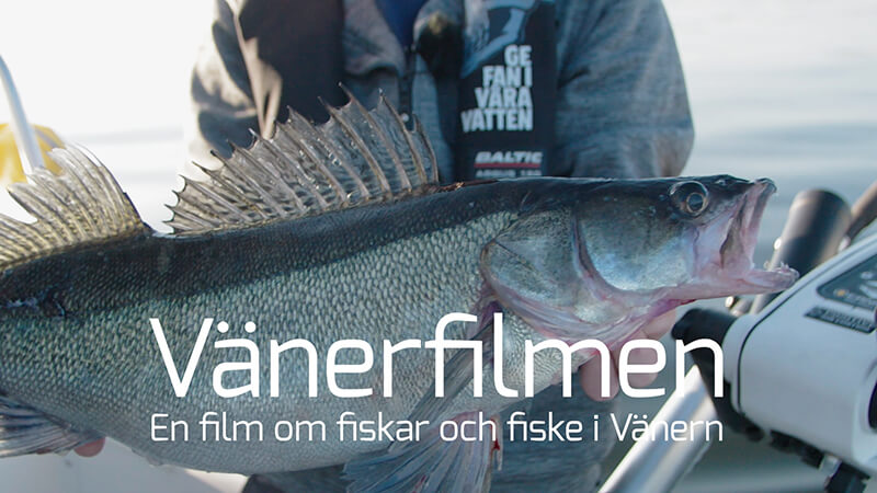 Hela Vänerfilmen på Sportfiskarnas Youtube