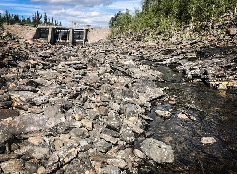 Upprop för rödingen i Jormvattnet i Jämtland