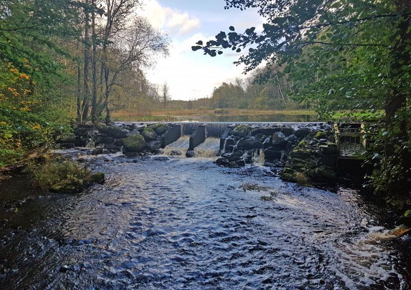 Miljöanpassning av vattenkraften – hur kommer det att funka?