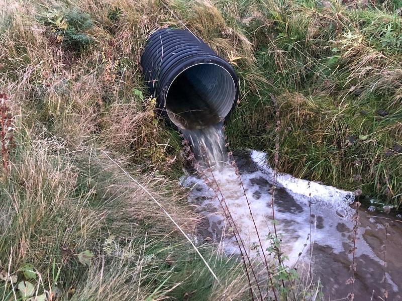 Sportfiskarna inventerar vandringshinder i Göta älvs vattensystem