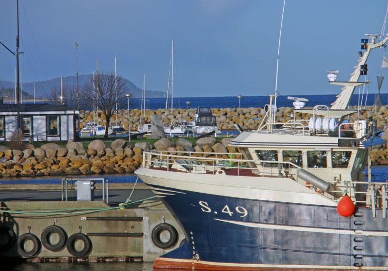 Ekosystem och hållbarhet i fokus på Östersjöfiske 2020