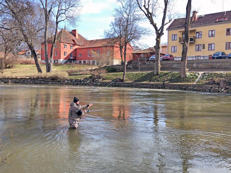 Fisketips: snart premiär för öringfisket i Nyköpingsån