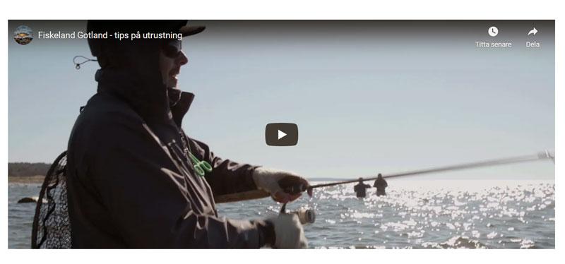 Filmpremiär: Sportfiskarna lanserar filmer om havsöringsfisket på Gotland