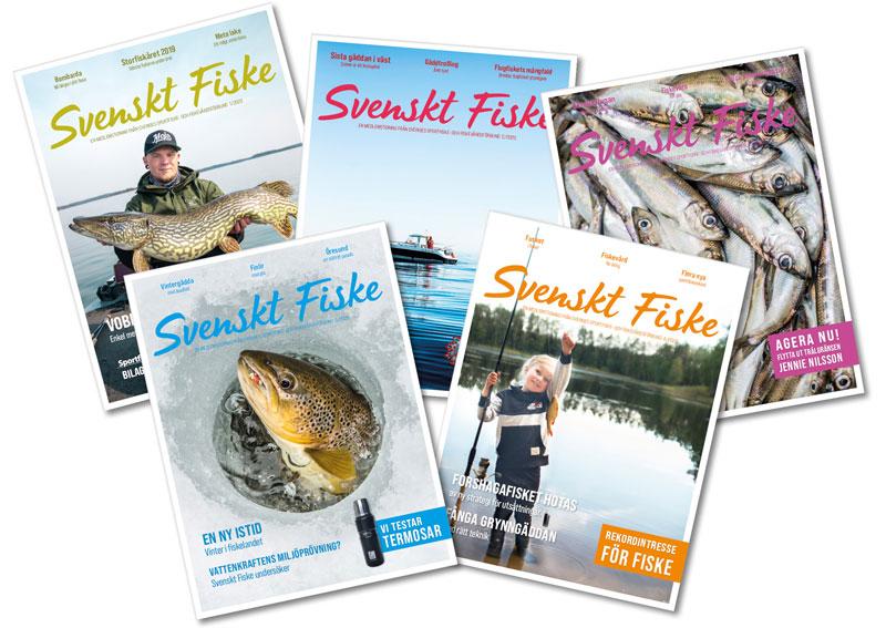 Ett år med nya Svenskt Fiske