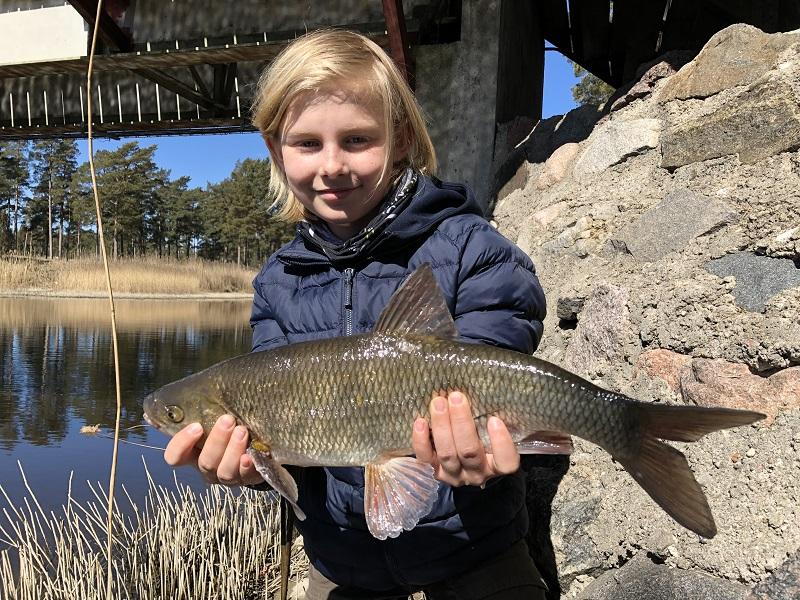 Sportlovsfiske på Gotland