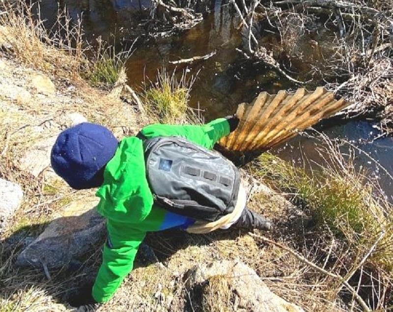 11: årig superhjälte rensade vandringshinder