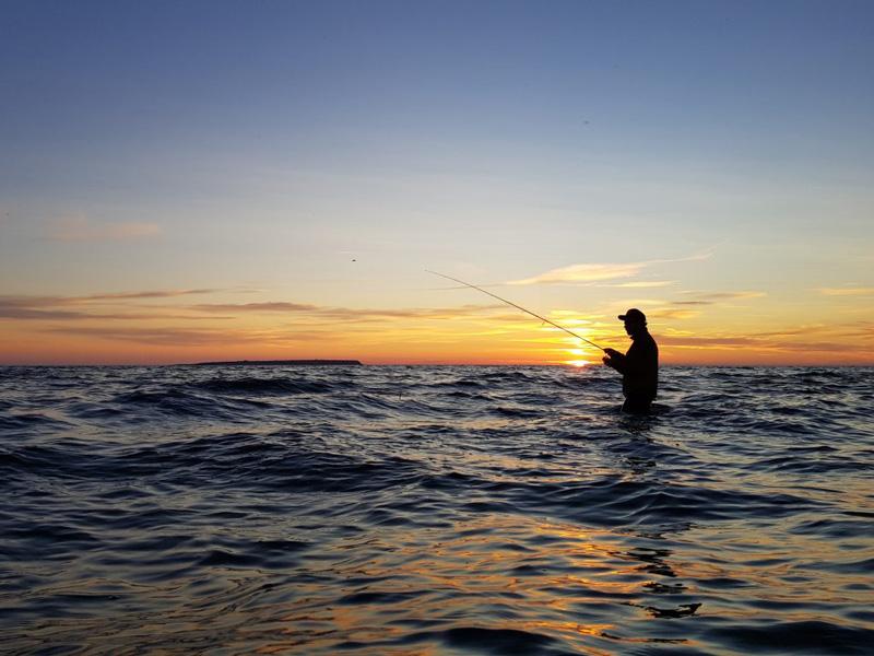 Nu öppnar fiskelandgotland.se
