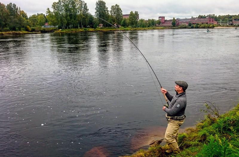 Ny laxstrategi kan bli dödsstöt för fisket i Forshaga