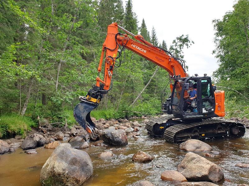 Ny fiskevård i Västernorrland: restaurering i Mjällån ska ge mer öring