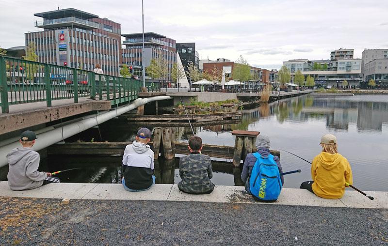 Streetfiske i Jönköping