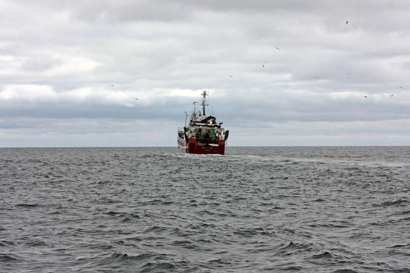 Miljömålsberedningen kritisk till fiskeriförvaltningen