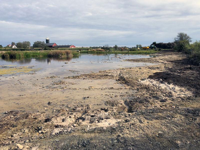 Ytterligare våtmark på Öland restaureras