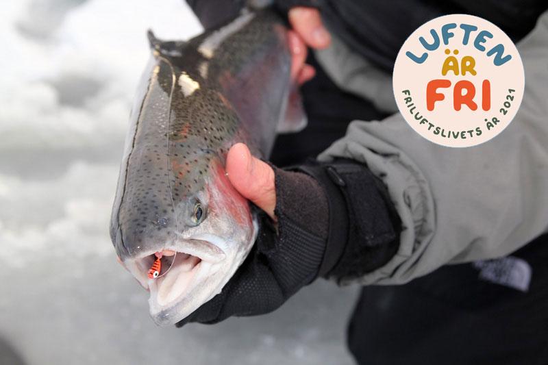 Fiska för 1 krona under sportlovet i Karlstad