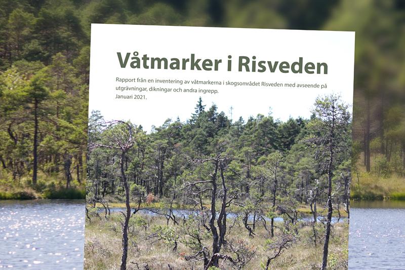 Tusentals våtmarker inventeras inför restaurering