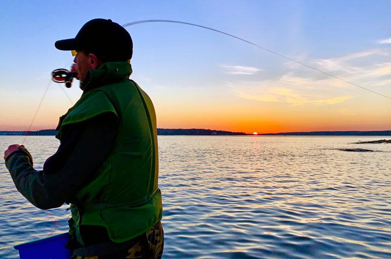 Utveckla ditt fiske- häng med på våra föreläsningar!