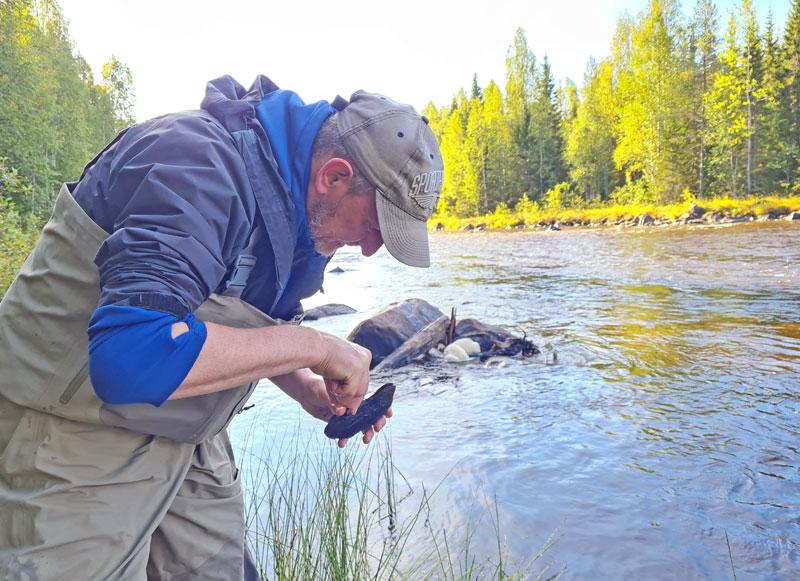 Sportfiskarna deltar i nytt LIFE-projekt i Norrbotten