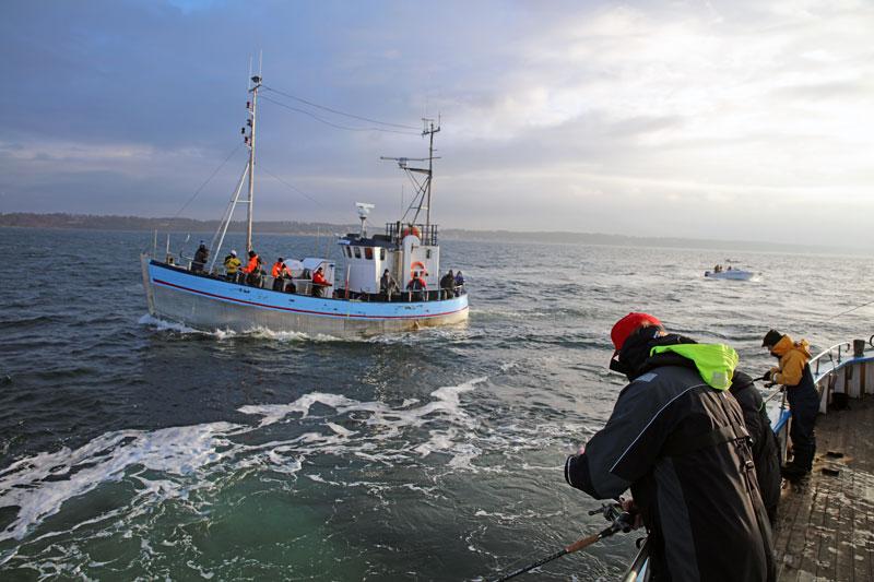 Sportfisket i Öresund kan hotas av nya fiskeregleringar