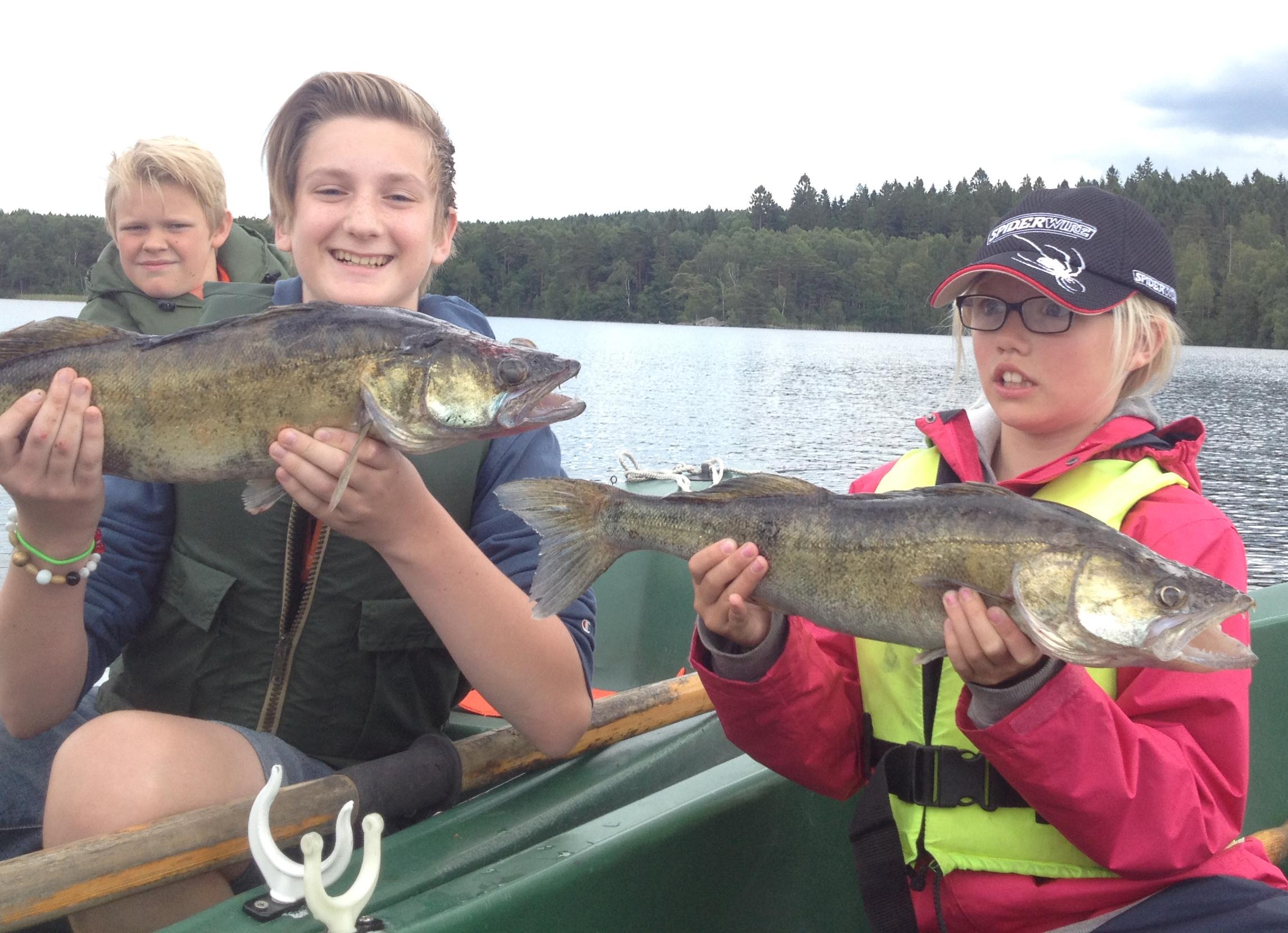 Fantastiskt fiske på Sportfiskarnas sommarfiskeskola!
