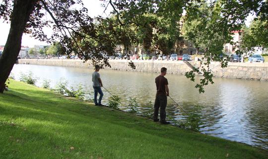 Testa Streetfishing i Karlstad