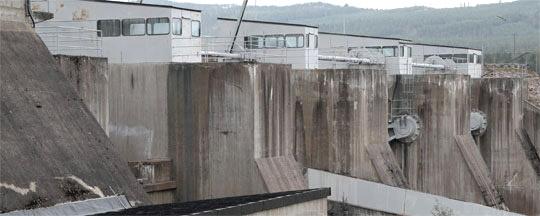 Fisk i kraftverksdammar blir mindre