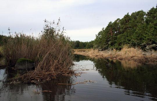 Fiskevårdsåtgärder klara på Östra Lagnö