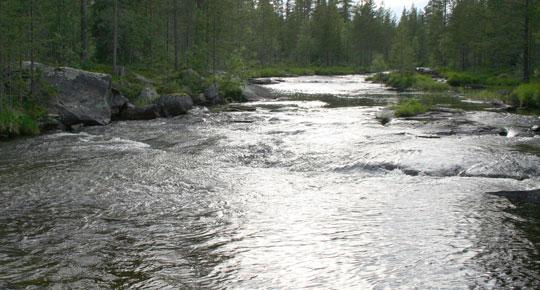 Genombrott för vattendirektivet