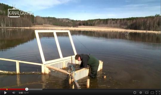 Film från Snäckstaviks våtmark